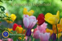 Consejeria Espiritual